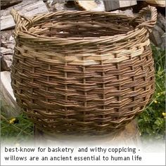Willow basket.
