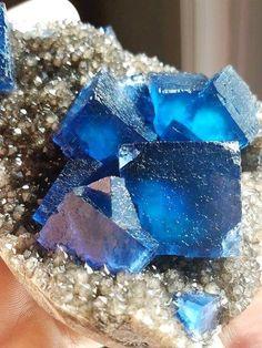 Perfect blue Fluorite crystals from Fiji Photo: MineralWonders/Jeff Wonder