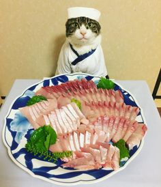 And he doesn't sample any of the food he poses with, not even the sashimi.