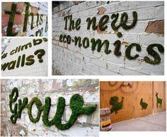 Как вырастить мох на стене