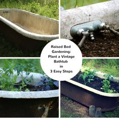 For a creative twist on raised bed or container garden, give old vintage bathtubs a try! Vintage tubs add instant charm and character to outdoor garden areas. With many different shapes and sizes t…