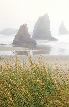 mydearmilo:  Sea Stacks $