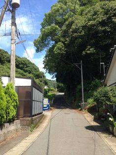 【画像】脇道の画像下さい : アルファルファモザイク