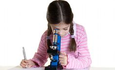 Science Standards for the Next Generation - Science Friday