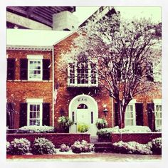 Kappa Alpha Theta - Delta Omicron Chapter, University of Alabama (with Bryant-Denny Stadium in the background)