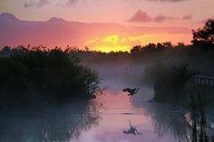Key West Florida Sunset Vinyl Print