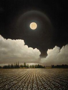 Southern Splendor Beneath The Full Moon Shines Over A Sea Of Cotton Beauty