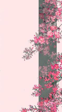 Are you looking for inspiration for wallpaper?Browse around this website for very best wallpaper inspiration. These interesting background pictures will make you happy. Framed Wallpaper, Flower Background Wallpaper, Flower Phone Wallpaper, Pastel Wallpaper, Cute Wallpaper Backgrounds, Pretty Wallpapers, Cellphone Wallpaper, Galaxy Wallpaper, Aesthetic Iphone Wallpaper