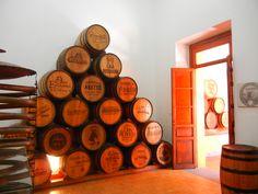 Barriles en Museo del Tequila, Tequila Pueblo Mágico, Jalisco, México.