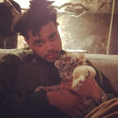 The weeknd & a baby tiger #theweeknd #xotwod