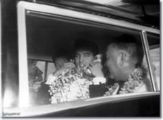 Elvis Presley : March 25, 1961. Elvis after arrival of Honolulu airport, where he greeted fans. - Elvis and his party didn't venture into the crowd. Looking pale, Elvis paused only twice in his march up and down outside the fence. Once he stopped to let a little girl give him a lei and he rewarded her with a sweet smile'. Then Elvis jumped into a waiting car and was escorted by police to the Hawaiian Village Hotel, where he would stay for three weeks while filming Blue Hawaii.