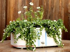 Pots don't have to be made out of Terra Cotta.  Use an old slow cooker!   REDOUXINTERIORS.COM FACEBOOK: REDOUX
