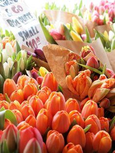 Tulips Pikes Place Seattle WA JSQUARED P L A C E S