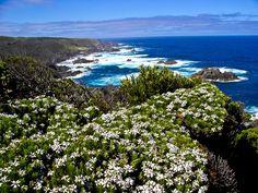 Most southern tip of King Island look at Tasmania
