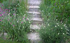 Harmonisch setzt sich der Terrassenbelag in der Treppe zum Garten fort. Hier sollten die Gartenbesitzer allerdings aufpassen, dass die seitliche Bepflanzung den Durchgang nicht zuwächst