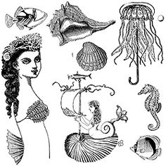 She Sells Seashells stamp collection by Catherine Moore