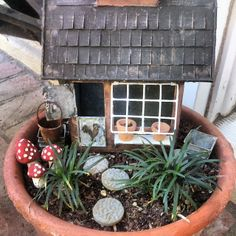 Chicken coop fairy garden, Sunny Simple Life: Fall Garden Chores, Chickens and the Fairy Garden