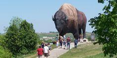 Worlds Largest Buffalo   National Buffalo Museum & Frontier Village   Jamestown, ND