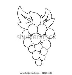 Grapes icon in outline style isolated on white background. Fruits symbol stock vector illustration.