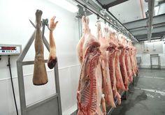 resident evil viande humaine 3