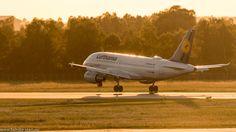 Landung eines A319 der Lufthansa in der Abendsonne auf der nördlichen Start-/Landebahn am Flughafen München