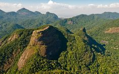 Tijuca National Park, Rio de Janeiro, Brazil   Nature's color palette is astounding.