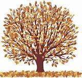 beautiful fall tree clip art - Yahoo Image Search Results