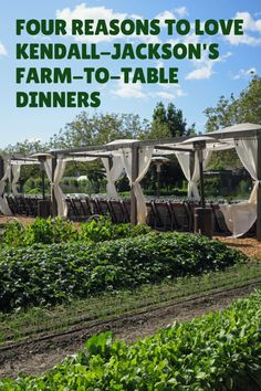 Four reasons to love Kendall-Jackson's farm-to-table dinners