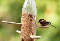 comedores para pássaros - Pesquisa Google