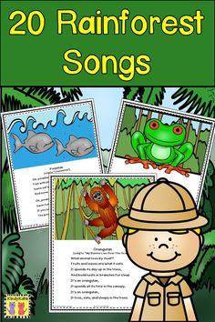 Rainforest Songs and Rhymes Rainforest Song, Rainforest Preschool, Rainforest Classroom, Preschool Jungle, Rainforest Habitat, Rainforest Animals, Preschool Lessons, Jungle Animals, Preschool Activities