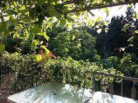 Gemüse & Naschen: Nach dem Urlaub