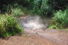 Kauai ATV Tours really make a splash! #Kauai #Hawaii #ATVs