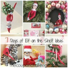 Need new ideas for you're curious elf?  Try these 7 Days of Elf on the Shelf Ideas.  A new idea for each day for one week.
