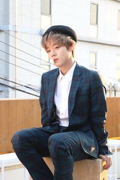 Park Jihoon Produce 101, Nikita Singh, Korea Wallpaper, Solo Male, Ong Seung Woo, Kim Jaehwan, Ha Sungwoon, Korean Star, Together Forever