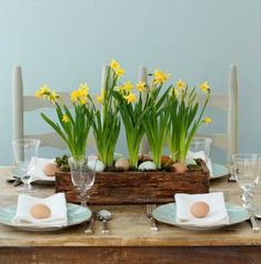 Grow Daffodils for a pretty easter centerpiece. 10 Decor Ideas for Easter + Spri… Grow Daffodils for a pretty easter centerpiece. 10 Decor Ideas for Easter + Spring Easter Table Settings, Easter Table Decorations, Table Centerpieces, Easter Centerpiece, Centerpiece Ideas, Easter Decor, Easter Crafts, Blue Eggs, Brown Eggs