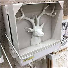 Stag Head Trophy Heavy-Duty Frame Holder – Fixtures Close Up Stag Head, Hooks, Display, Frame, Animals, Floor Space, Picture Frame, Animales, Billboard
