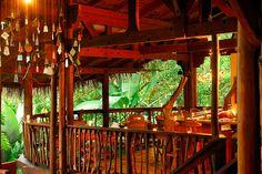 Nicuesa Lodge Bar. World class bar .  http://www.nicuesalodge.com