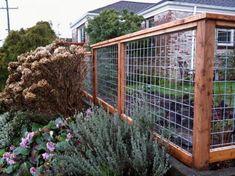 Wood Wire Modern Dog Fence Home Ideas Cheap Garden Fencing, Diy Backyard Fence, Diy Garden Fence, Garden Privacy, Backyard Landscaping, Garden Ideas, Backyard Ideas, Easy Garden, Wooden Garden