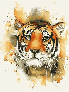 Animal Drawings 30 God Level Animal Paintings You'll Surely Love - The God Level Animal Paintings are no doubt amazing. But which out of these you choose should depend on what kind of interiors you want it for, and what is Watercolor Tiger, Tiger Painting, Watercolor Animals, Painting & Drawing, Tiger Drawing, Tattoo Watercolor, Animal Paintings, Animal Drawings, Art Drawings