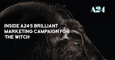 Inside @A24 Films' Brilliant Marketing Campaign for 'The Witch' by @MassiveKontent  http://buff.ly/2hs3zz5