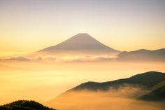 Golden World - Yuga Kurita - DESCRIPTION - When the sun came up, everything turned into gold. Surrounded by a golden sea of clouds, Fuji was so elegant and beautiful.