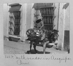 El lecherito de Arequipa 1914. Cortesía: Pedro Encina, Santiago (Chile).