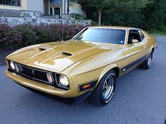 1973 Mustang, Mustang Mach 1, Classic Mustang, Old School Cars, Ford Mustang Shelby, Us Cars, Pontiac Firebird, Ford Motor Company, Custom Cars