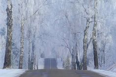 Winter road - Please,look in black background ! ~~~~~~~~~~~~~~~~~~~~~~~~~~~
