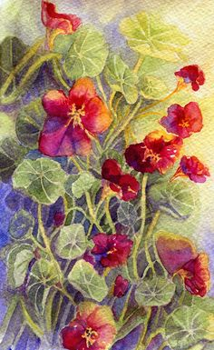 Summer Flowers 3 by Til-Til.deviantart.com on @DeviantArt