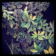 #арт #аригарт #графика #рисунок #картина #поле #цветы #трава #полевыецветы #луг #листья #art #arigart #picture #drawing #graphic #graphicarts #flowers #wildflowers #field #grass #meadow #painting