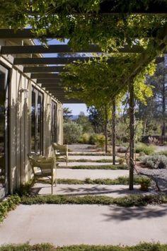 contemporary exterior by John Lum Architecture, Inc. AIA