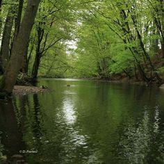 Rahway River, meande