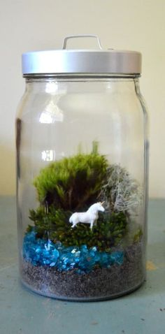 27 Terrariums That Will Restore Tranquility To Your Home
