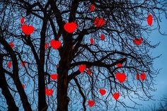 Tree with illuminated red hearts, Christmas decoration in Tivoli Gardens amusement park Great Love Quotes, Tivoli Gardens, Heart Tree, Adam And Eve, Valentines Day Hearts, Amusement Park, Love Heart, Royalty Free Images, Halloween